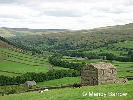 Swaledale in Yorkshire